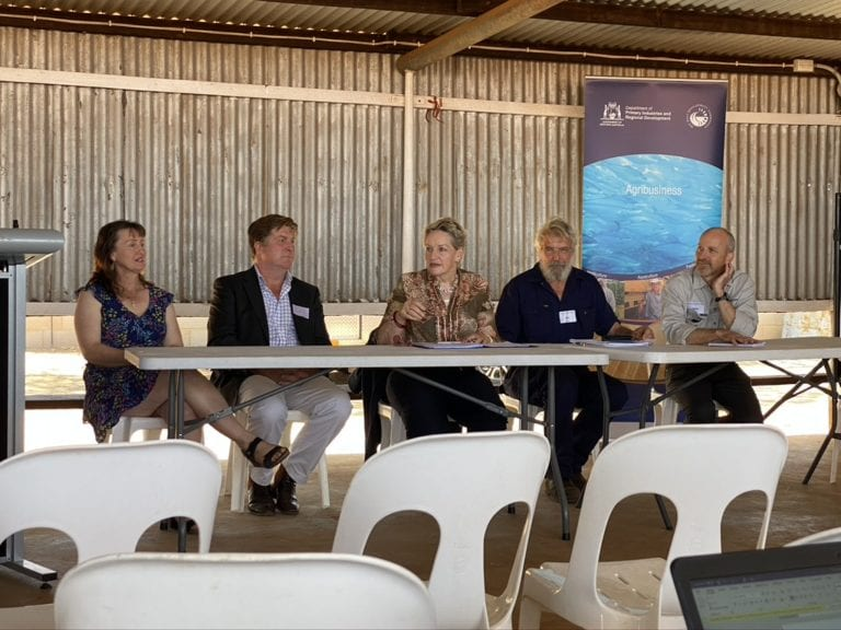 Southern Rangelands Round Table Panel